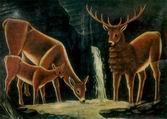 Семья оленей